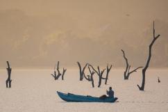 Sri Lanka - Al sorgere del sole un pescatore è già al lavoro per garantirsi un pasto e qualche rupìa vendendo il pesce al piccolo mercato locale. La luce pennella tutto con polvere d'oro e l'unico rumore che si sente è la voce dei cormorani in attesa sui rami più alti della foresta di alberi morti in mezzo al lago.