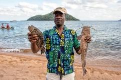 Il Chambo (Oreochromis lidole, a sinistra nella foto) è un grosso Ciclide che abita le acque più profonde del lago Nyasa. E' considerato una prelibatezza ed è l'unico pesce ad avere un certo valore economico poiché molto ricercato dai ristoranti che servono i pochi viaggiatori che arrivano a queste sponde.